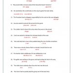 8+ Printable Homographs Examples   Pdf | Examples   Printable Homograph Puzzles