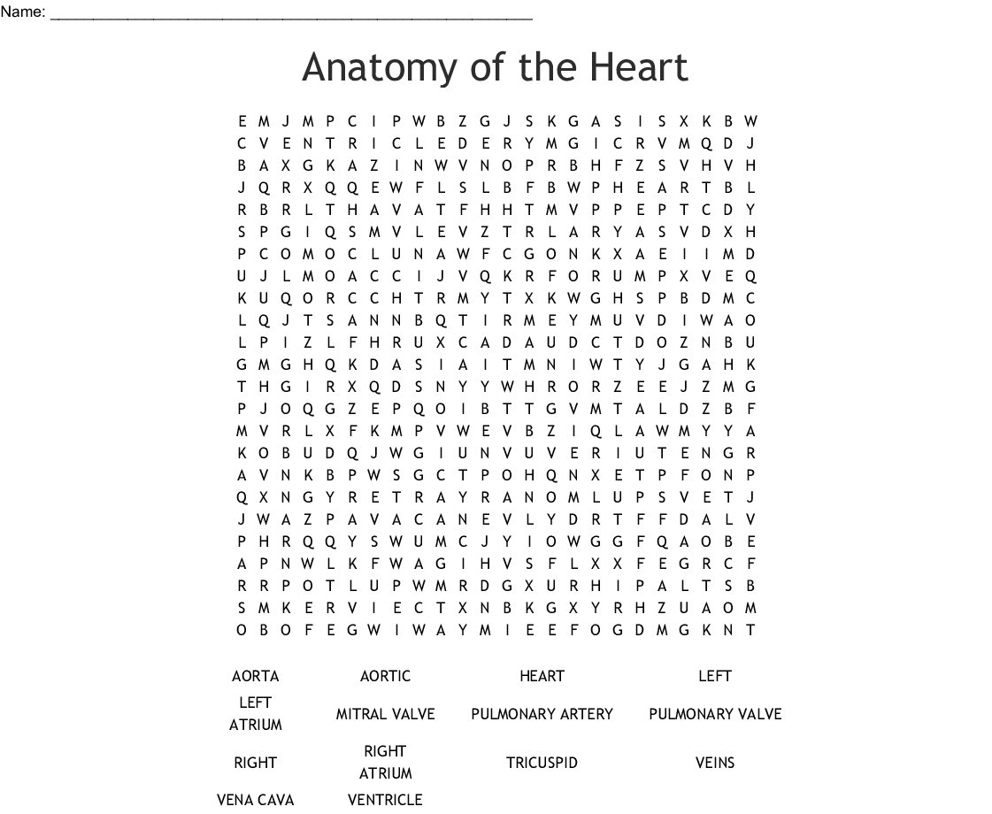 Anatomy Of The Heart Word Search - Wordmint - Printable Grey's Anatomy Crossword Puzzles