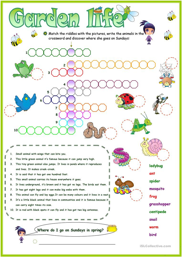 Animals In The Garden Crossword Worksheet - Free Esl Printable - Printable Garden Crosswords