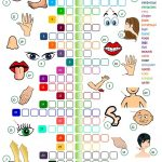 Body Parts   Crossword Worksheet   Free Esl Printable Worksheets   Printable Crossword Esl