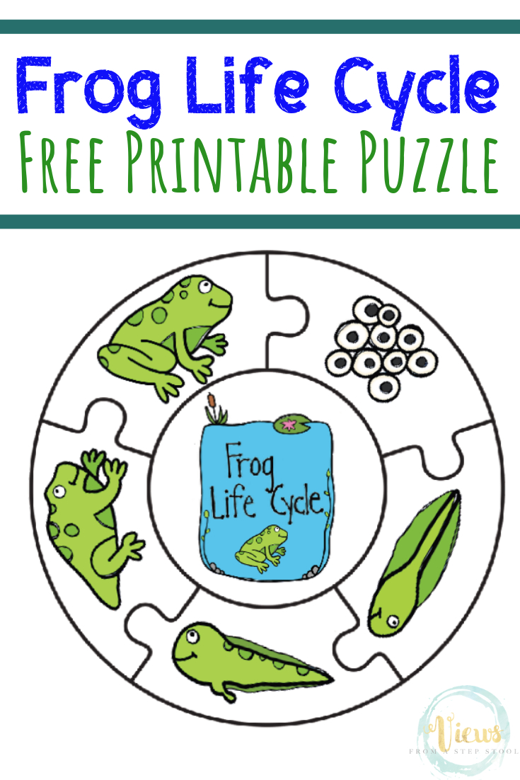 Frog Life Cycle Printable Puzzle - Views From A Step Stool - Printable Puzzles For Preschoolers