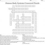 Human Body Systems Crossword Puzzle Crossword   Wordmint   Anatomy Crossword Puzzles Printable