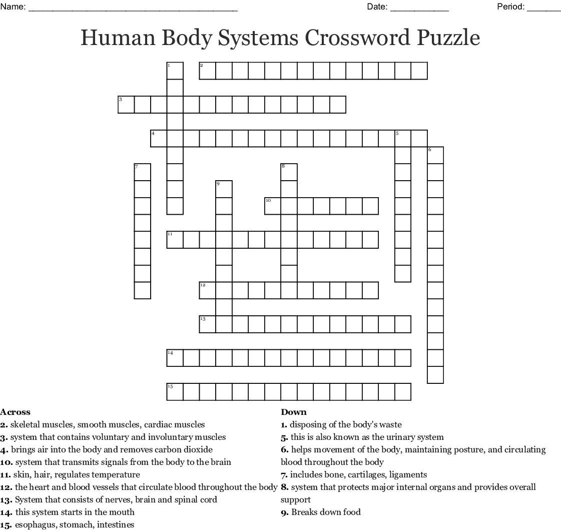 Human Body Systems Crossword Puzzle Crossword - Wordmint - Anatomy Crossword Puzzles Printable