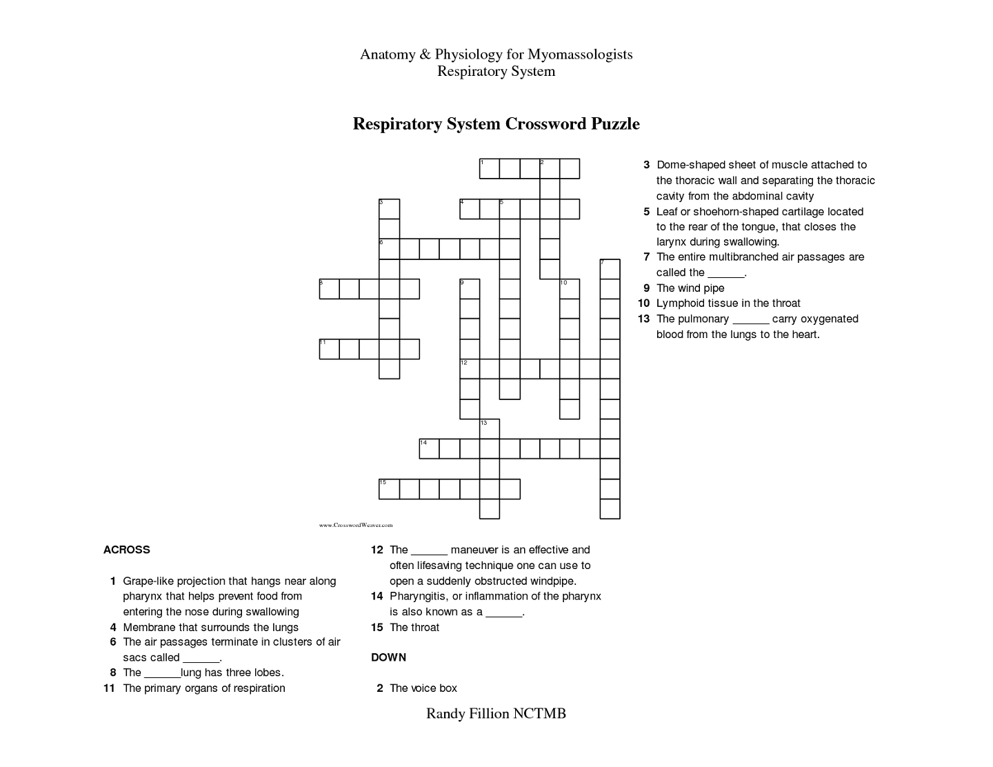 Respiratory System Crossword Puzzle | Educative Puzzle For Kids - Respiratory System Crossword Puzzle Printable