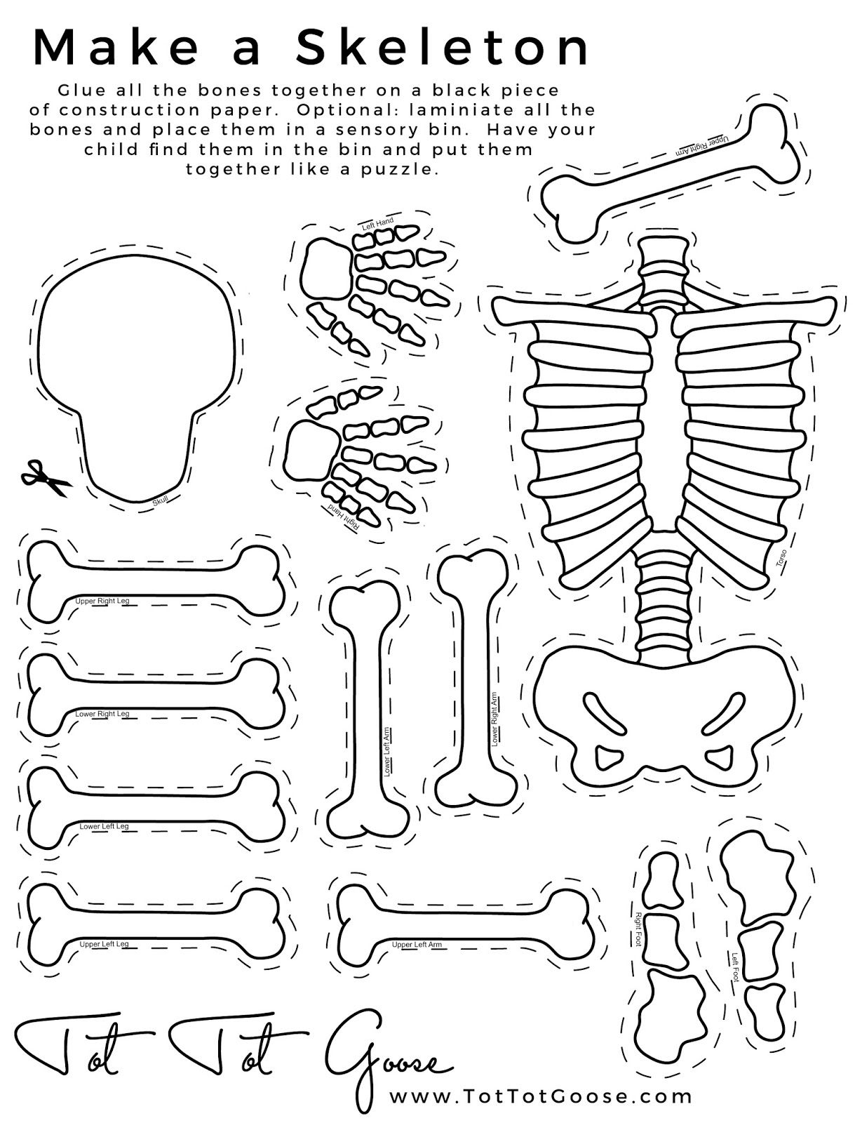 Skeleton Printable, All About Me Theme, Preschool Theme, All About - Printable Body Puzzle